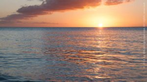 Read more about the article I moved to St. Croix five years ago