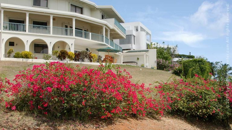 Apartments Renting In The Virgin Islands USVI Relocation Guide